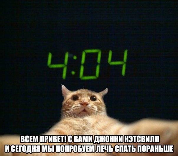 http://cs14111.vk.me/c540101/v540101082/19ed8/vSiQZudC-HI.jpg