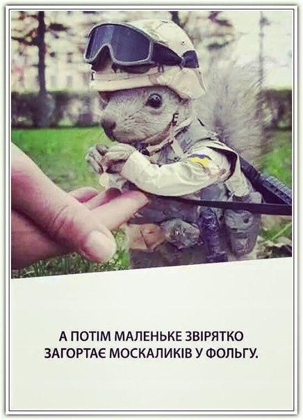 Коморовский: Увеличение финансирования польской армии - ответ агрессивной России - Цензор.НЕТ 9939