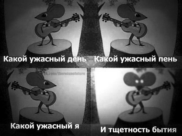 https://pp.userapi.com/c540101/v540101311/12eb/H1I-yzFerrE.jpg