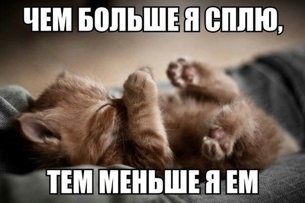 http://cs14111.vk.me/c540101/v540101493/10b56/HA--mVsGSEc.jpg