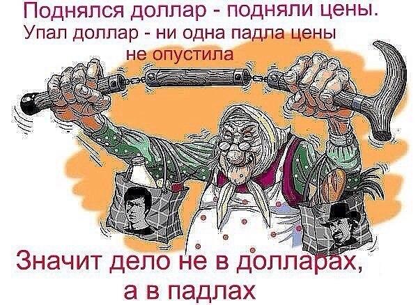 Саженцы п х Май   ВКонтакте
