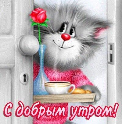 http://cs14113.vk.me/c540101/v540101710/88b7/NfDdyG7A8uQ.jpg