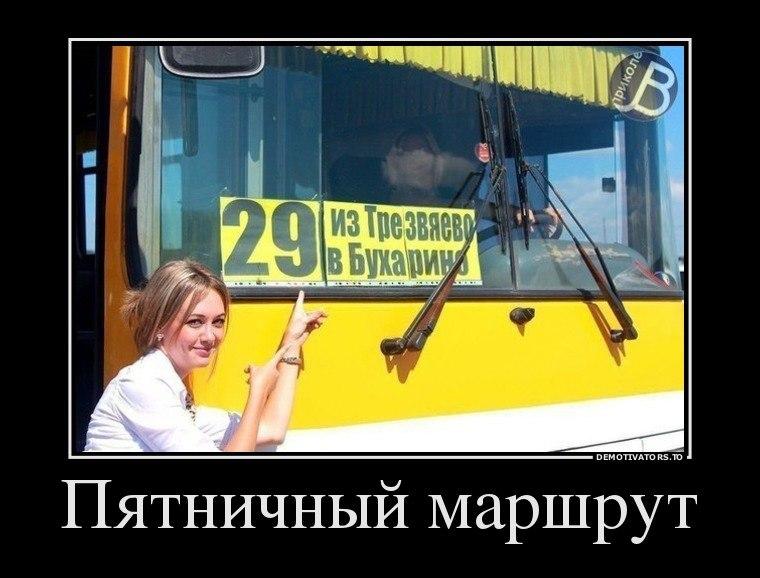 Поговорить этим коты воители смешние истории Харченко том спасибо