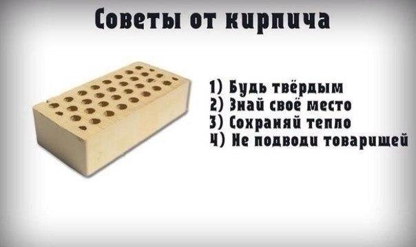 http://cs14109.vk.me/c540101/v540101915/23869/LGgTGSPFxAo.jpg