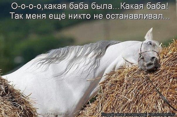 http://cs7057.vk.me/c540101/v540101926/22c51/xnuIAjxUKx4.jpg