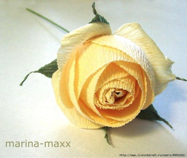 Английская роза из конфет (9 фото) - картинка