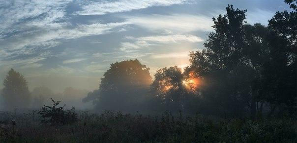Пойма реки Болва, Брянская область. Автор фото: Максим Шилин. Доброе утро!