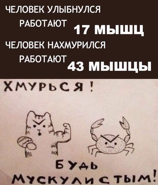 https://pp.vk.me/c540102/v540102091/2bae9/XQe41TxTJ_M.jpg