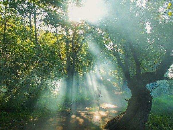 «Утро нового дня». Автор фото — Владимир Липилин