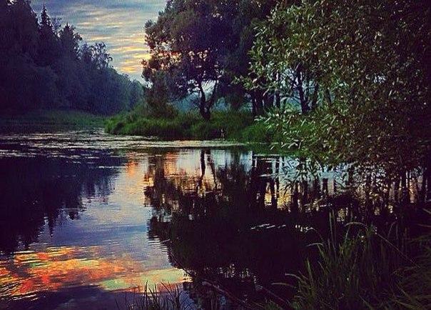 Вы когда-нибудь делали фотографии дикой природы России на смартфон или планшет? Если у вас есть интересные снимки, предлагаем принять участие в конкурсе «Дикая природа России» – в специальной номинации SanDisk «Редкий кадр». Для этого просто опубликуйте свои снимки в Facebook или в Instagram с хэштегами #ДикаяПриродаРоссии и #РедкийКадрSanDisk . Автор фото: raven_on_the_tree