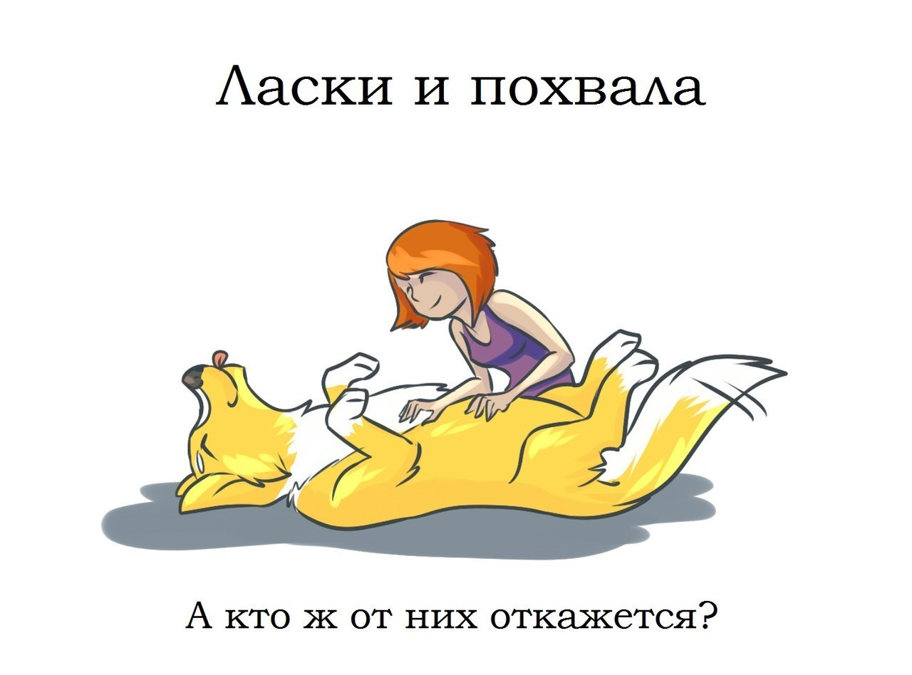 http://cs14106.vk.me/c540102/v540102267/20034/P3wZpS8IkZA.jpg