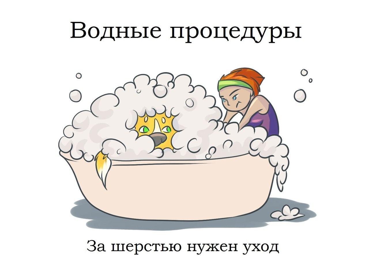 http://cs14106.vk.me/c540102/v540102267/2003d/0FXzwMwaOLs.jpg