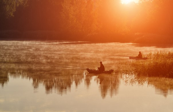 Утренняя рыбалка. Автор фото: Анатолий Гордиенко.