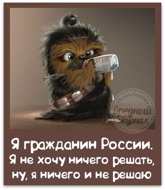 http://cs14101.vk.me/c540102/v540102336/5a0a/vbsh7vkid6s.jpg
