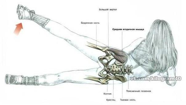 Самые эффективные упражнения для упругой груди
