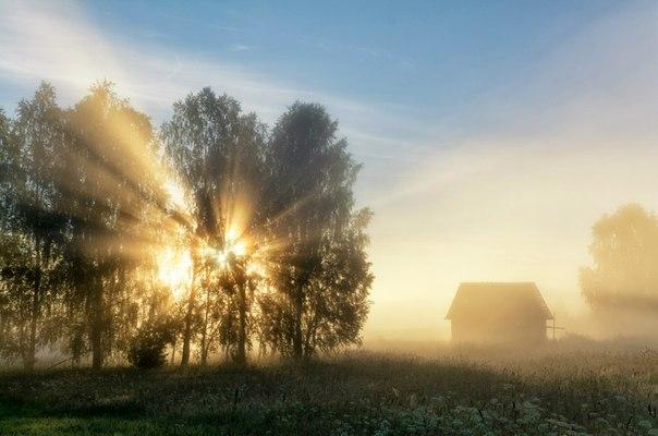 Летнее утро в Кировской области. Автор фото: Михаил Устюжанин.