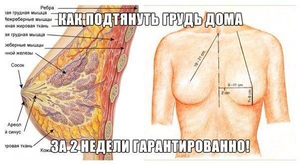 Как в домашних условиях сделать грудь упругим