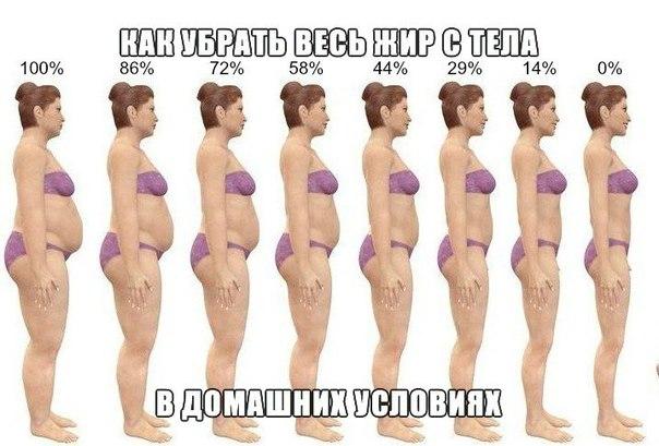 как убрать жир потерять мышечную массу