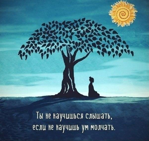 http://cs14101.vk.me/c540102/v540102434/2d5b5/6YmOU4EvaoU.jpg