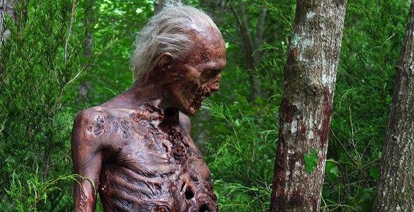 В шестом сезоне «Ходячих мертвецов» будут применяться цифровые эффекты