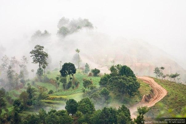 Туман в предгорье Гималаев, Непал. Автор фото — Антон Янковой