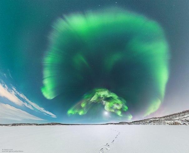 Полярное сияние над Кольским полуостровом. Фотограф — Кирилл Алешин: Спокойной ночи.