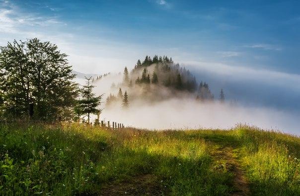 «Дымящиеся горы». Карпаты, Украина. Автор фото — Александр Науменко: nat-geo.ru/photo/user/47175/