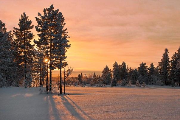 «Ванильное небо». Ямало-Ненецкий автономный округ. Автор фото — Денис Асташкин: nat-geo.ru/photo/user/170901/