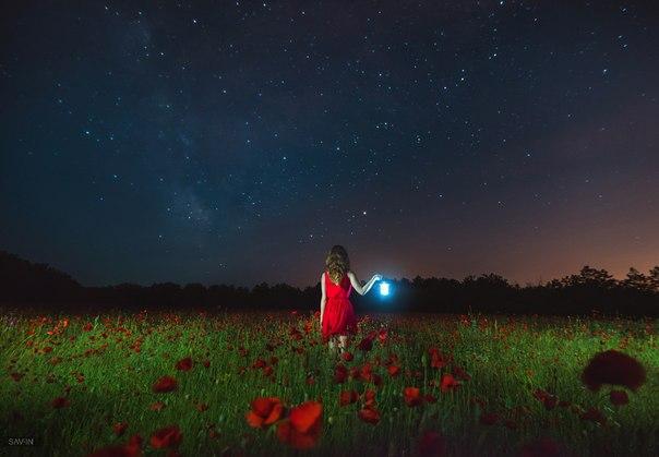 Маковое поле в Крыму. Автор фото — Станислав Савин: nat-geo.ru/photo/user/24341/ Добрых снов!