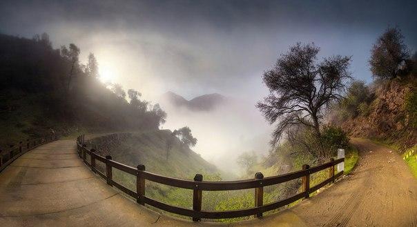 Утро в окрестностях парка Йосемити, США. Автор фото — Станислав Савин: nat-geo.ru/photo/user/24341/