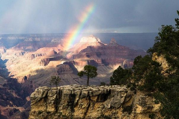 Большой каньон, штат Юта. Автор фото — Елена Миловзорова: nat-geo.ru/photo/user/121214/