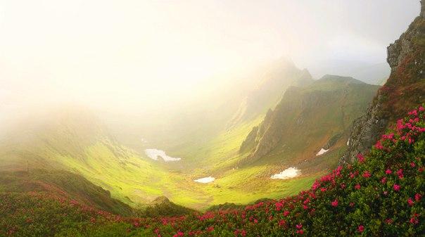 Гуцульские Альпы. Автор фото — Alex Venediktov: nat-geo.ru/photo/user/188091/