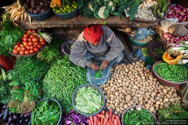 Antón Yankovoy, el autor de la foto: «¡India es aun otro país, es otro mundo! Es completamente imposible visitar India y no visitar el mercado indio o, como de ello es aceptado aquí llamar, el Mercado. Esta palabra determina mejor imposible la sensación de la vida en la mayoría de las ciudades de India. El mercado indio es no sólo la mezcla de las personas, los tintes, las lenguas, los olores y las cosas, y no simplemente cierto lugar local. El mercado es una imagen y el sentido de la vida para muchos indios y sin háberlo conocido, será difícil comprenderle …
