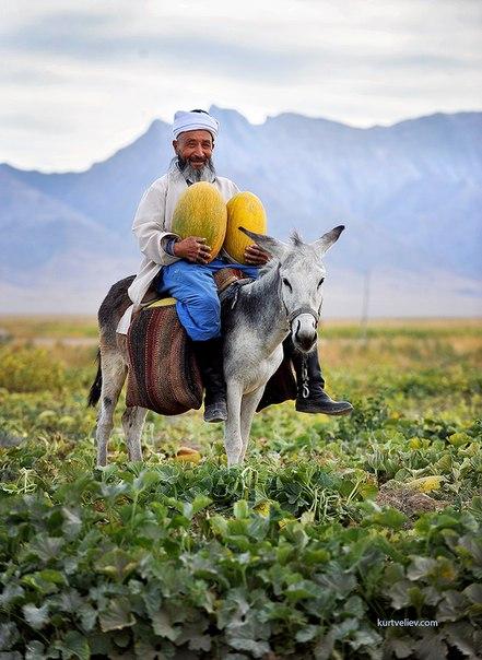 Подборка фотографий с фотоконкурса «Краски жизни», который проводится на нашем сайте. Поделитесь своими фото и выиграйте новую беззеркальную камеру от известного бренда: nat-geo.ru/~Fujifilm