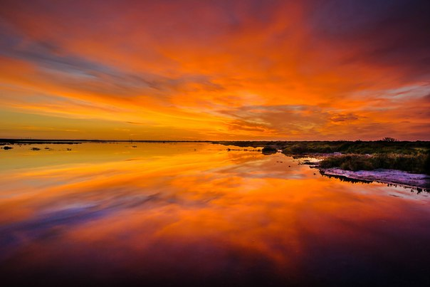 Rising the sun in the reserve Punta Entinyas-Sabinal. Spain. The author of a photo — Lois Daguerre: nat-geo.ru\/photo\/user\/245361\/