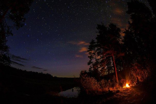 «У костра под звёздами». Автор фото — Марина Мурашова: nat-geo.ru/photo/user/9891/ Спокойной ночи!