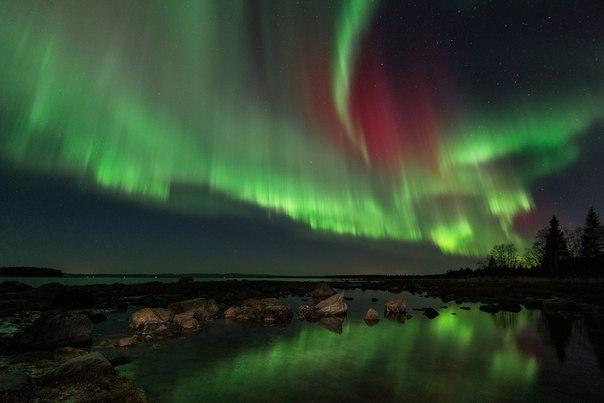 Полярное сияние на берегу Белого моря. Кандалакшский залив. Автор фото — Павел Алексеев: nat-geo.ru/photo/user/207001/ Доброй ночи!