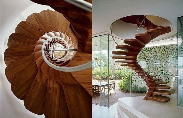 Необычная лестница (1 фото) - картинка