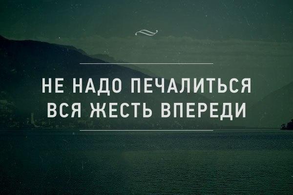 http://cs14113.vk.me/c540102/v540102608/213f1/QidGsodtWNo.jpg