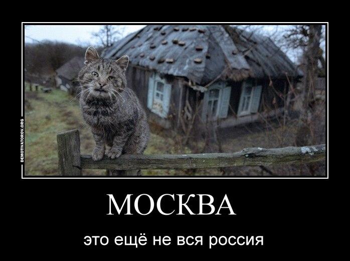 Образом, скачать русскую программу для создания видео из фото обратились вам
