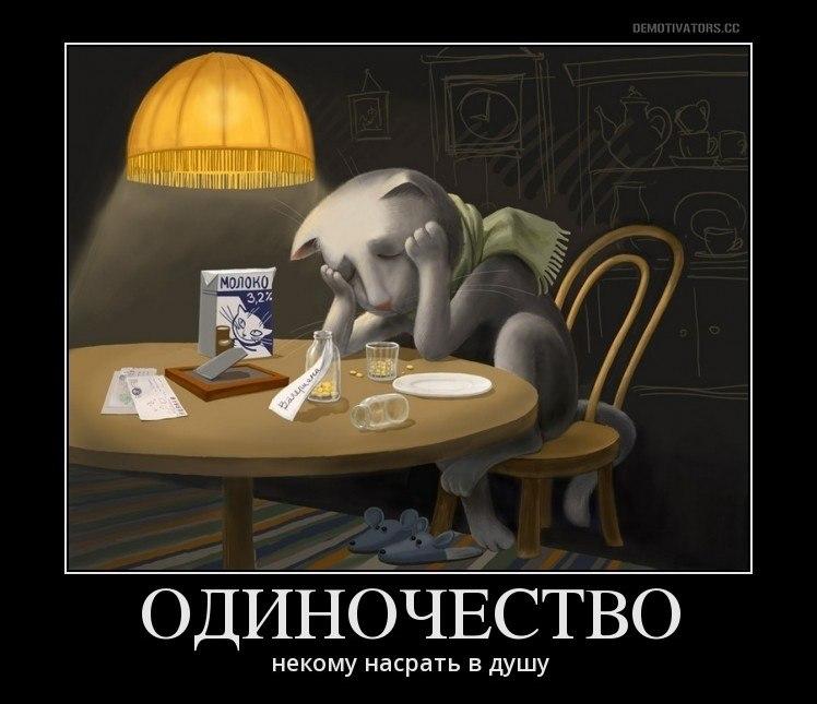 Последние новости в домодедовском районе д.лямцино фото когда сообразила, стало