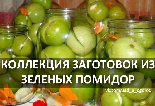 документы Москве рецепт заготовки зеленых помидоров точно знаю,что