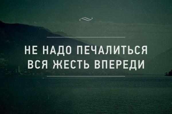 http://cs14113.vk.me/c540102/v540102692/114db/D1aA6xwld38.jpg
