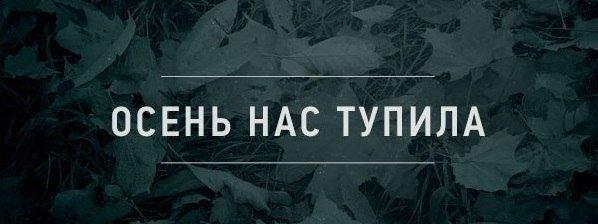 http://cs14113.vk.me/c540102/v540102692/114e2/Cf7C3cGCjbo.jpg