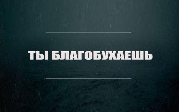 http://cs14113.vk.me/c540102/v540102692/114f0/k_SCxPUTtLM.jpg