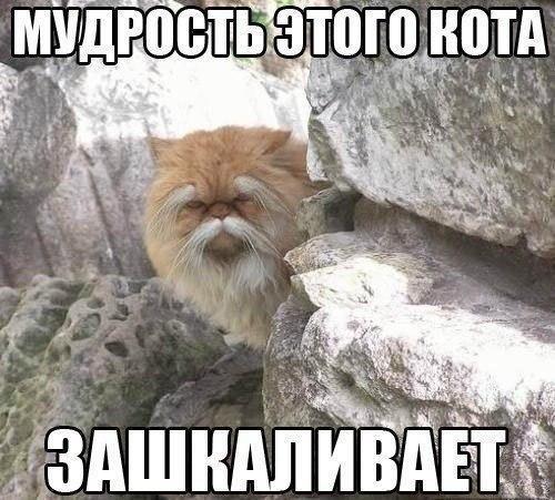 Да, сама мудрость!:)