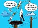 Арман Даукараев фото #38