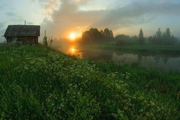 Деревня Церковище, Псковская область. Автор фото: Петр Косых.