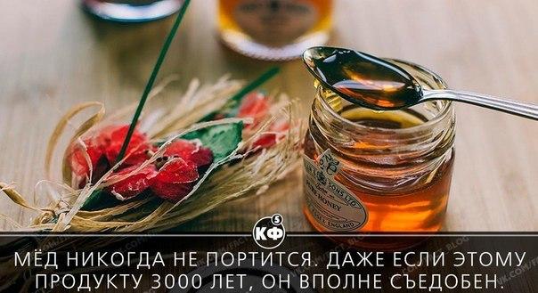 заинтересованы мёд никогда не портится