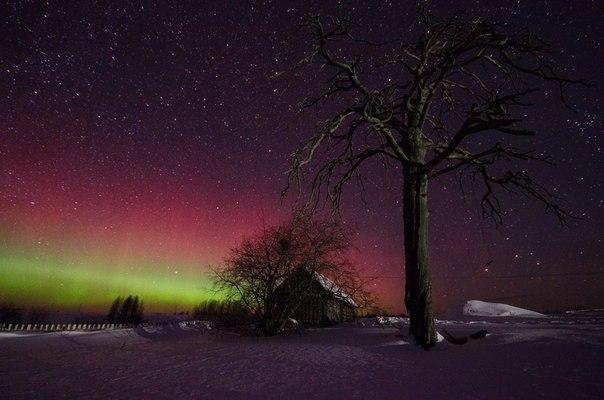 Северное сияние в Бисерово, Кировская область. Автор фото — Сергей Бисеров: Доброй ночи!